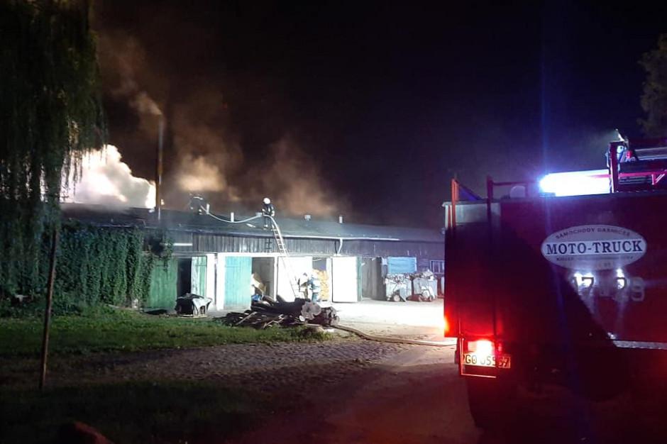 Wielkopolska: Pożar w zakładzie mięsnym