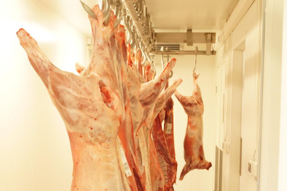 MRiRW stara się o uruchomić skup wieprzowiny na rezerwy państwa