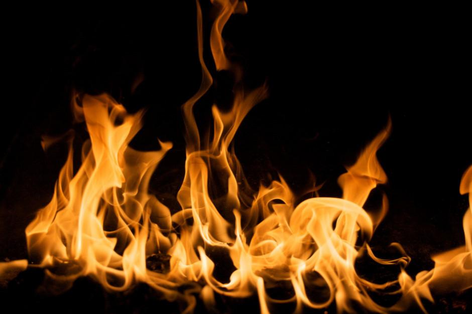 Podpalenie na fermie drobiu: Zatrzymano trzech Ukraińców