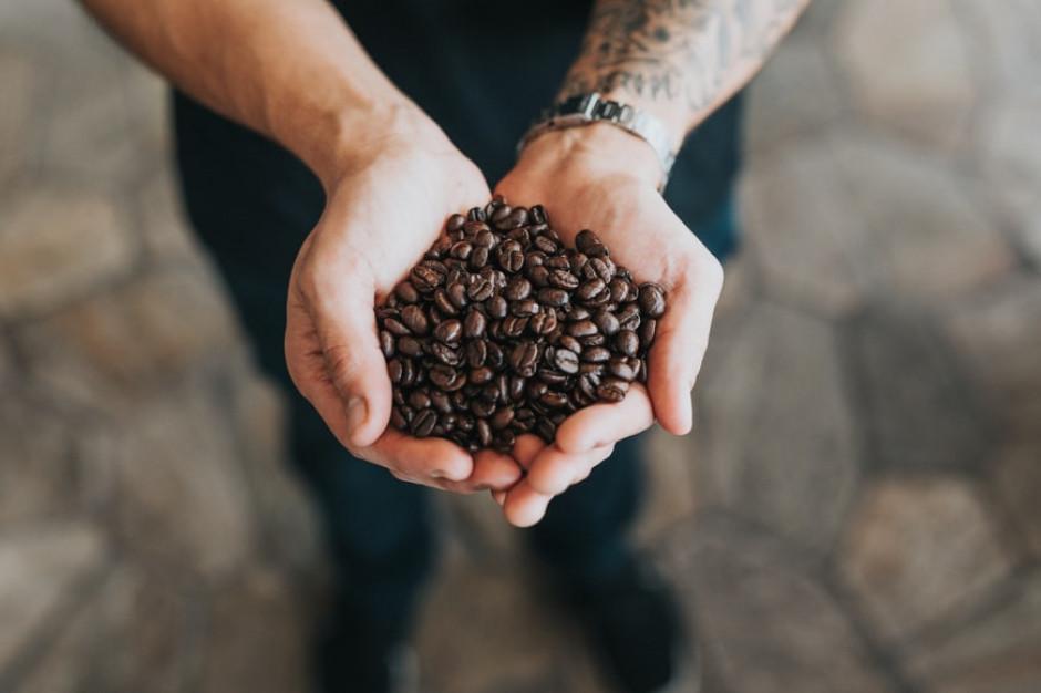 Zmiany klimatu pozytywnie wpłynęły na uprawę kawy na Sycylii
