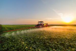 Pestycydy: zagrożenie czy wybawienie?