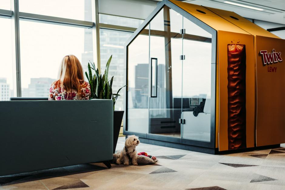 Mars wprowadził hybrydowy model pracy i dopasował pod to biuro