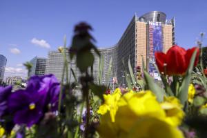 Od pola do stołu. Dlaczego UE nie patrzy na dane?