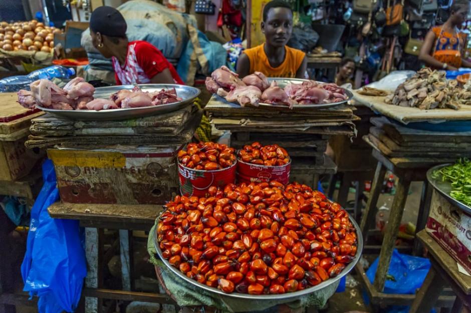 Indonezja: koniec z eksportem surowego oleju palmowego