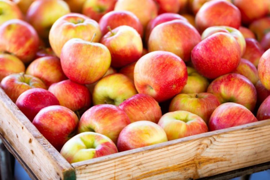 Jabłka Ligol z polskich sadów w sklepach Lidla
