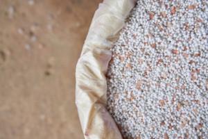 Grupa Azoty ogranicza eksport nawozów i kieruje je na rynek krajowy
