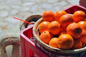 Hiszpański rolnik wygrał batalię prawną o mandarynki z królem Maroka