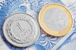 Złoty pozostanie słabszy, euro w okolicy 4,60 zł